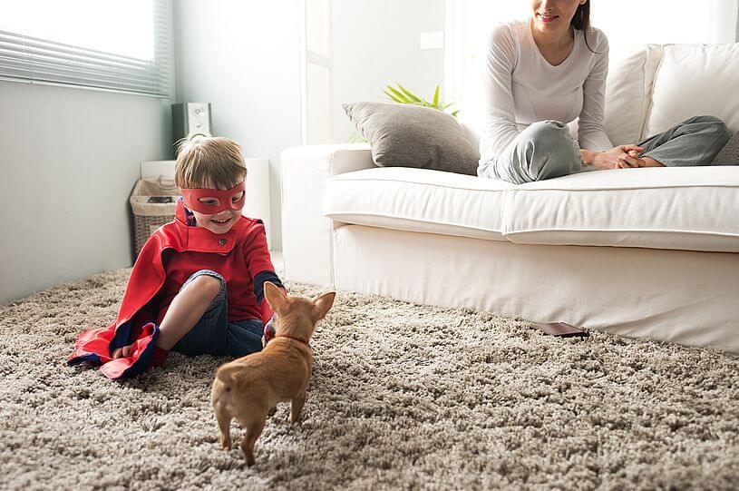 Zabawa z psem na dywanie, czyli kilkuleti chłopiec z peleryną i maską superbohatera bawi się na miękkim jasnym dywanie z małym pieskiem, a wszystkiemu przygląda się kobieta w jasnej bluzce i jasnych spodniach siedząca na jasnej sofie